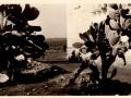 1943 - AEROPORTO DI CHINISIA (11)