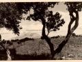 1943 - AEROPORTO DI CHINISIA (7)