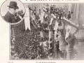 1908 - NASI PARLA DAL BALCONE DEL MUNICIPIO - 1