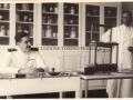 1940 (9 NOVEMBRE) - OSPEDALE MILITARE DI TORREBIANCA