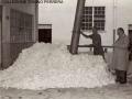 1950 CIRCA - LAVORAZIONE DEL COTONE (1)