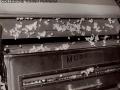1950 CIRCA - LAVORAZIONE DEL COTONE (2)