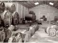 1950 CIRCA - LAVORAZIONE DELL UVA (8)